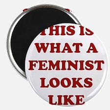 feministLooksLike1C Magnet