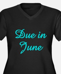 Due In June Aqua Women's Plus Size V-Neck Dark T-S