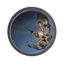 immature ealge dark sky Wall Clock