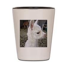 What's Up Alpaca Shot Glass
