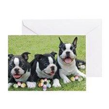 Easter boston terriers Greeting Card