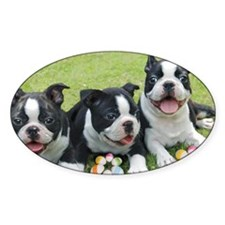 Easter boston terriers Decal