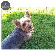 Attention dog loverAdorable little Yorky do Puzzle
