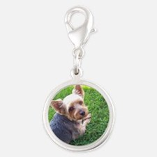 Attention dog loverAdorable li Silver Round Charm
