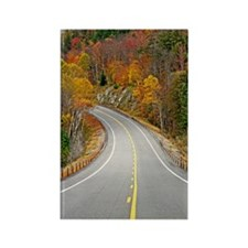 Winding Road 278 Rectangle Magnet