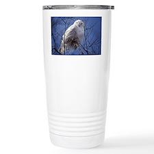 Snowy Owl Travel Coffee Mug