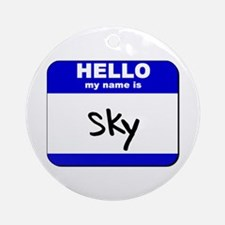 hello my name is sky  Ornament (Round)