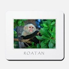 ROATAN Monkey Mousepad