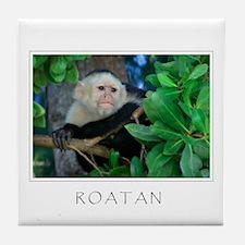 ROATAN Monkey Tile Coaster