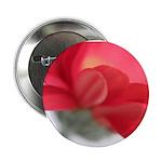 Red Gerber Daisy Button