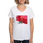 Red Gerber Daisy Women's V-Neck T-Shirt