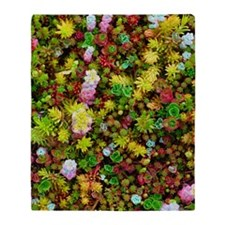Variegated Floral Succulents Throw Blanket