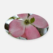 Pink Dogwood Flower Oval Car Magnet