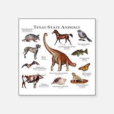"Texas State Animals Square Sticker 3"" x 3"""