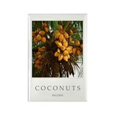 Caribbean_coconut_tree Rectangle Magnet