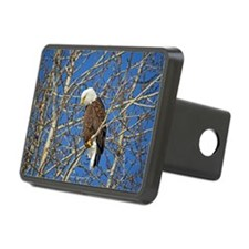 Magnificent Bald Eagle Hitch Cover