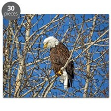 Magnificent Bald Eagle Puzzle