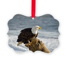 Bald Eagle Homer Alaska Ornament