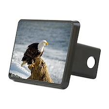 Bald Eagle Homer Alaska Hitch Cover