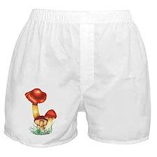 Crimson waxcap mushrooms, artwork Boxer Shorts