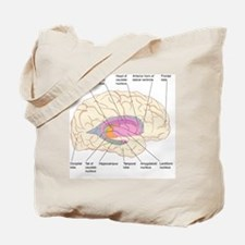 Basal ganglia, artwork Tote Bag