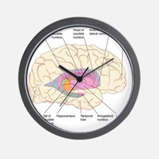 Basal ganglia, artwork Wall Clock