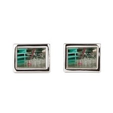 Cell cultures in multi-well tray Cufflinks