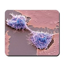Dividing HeLa cells, SEM Mousepad