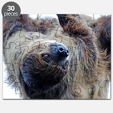 Sloth Throw Pillow Puzzle