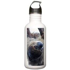 Sloth Incredible Case Water Bottle