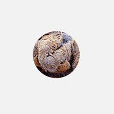 Kidney glomeruli, SEM Mini Button