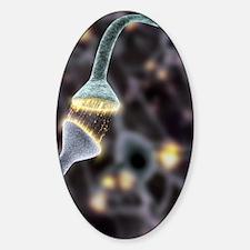 Nerve synapse, artwork Sticker (Oval)