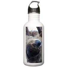 Sloth Nexus Case Water Bottle
