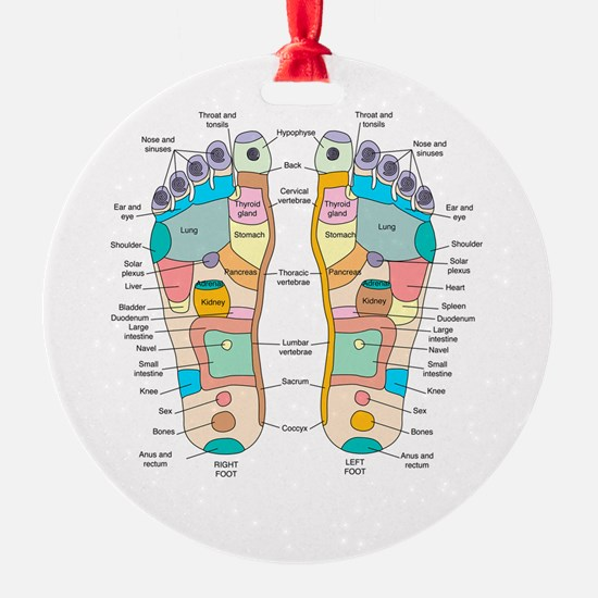 Reflexology foot map, artwork Ornament