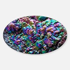 Goethite crystals Sticker (Oval)