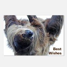 Sloth Greeting Card Postcards (Package of 8)