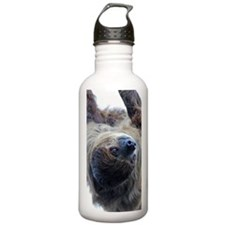 Sloth iPhone 3G Case Water Bottle