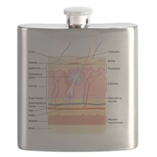 Skin disorders, artwork Flask