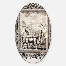 1731 Johann Scheuchzer Bible giraff Sticker (Oval)