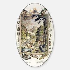1731 Johann Scheuchzer Creation 5/6 Sticker (Oval)