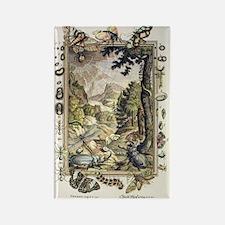 1731 Johann Scheuchzer Creation 5 Rectangle Magnet