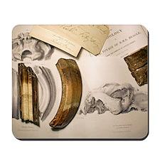 1838 Toxodon teeth Mousepad