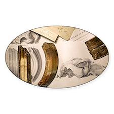 1838 Toxodon teeth Decal