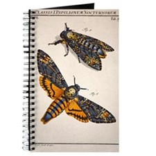 1744 Death's head hawkmoth by Rosenhoff Journal