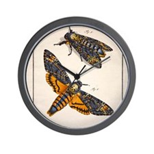 1744 Death's head hawkmoth by Rosenhoff Wall Clock