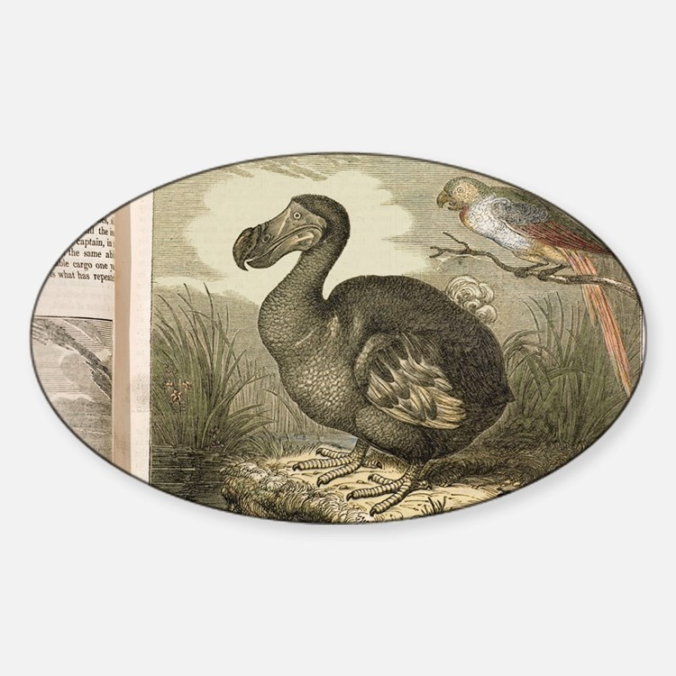 1833 Fat Dodo from the Penny Magazi Decal