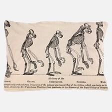 1863 Huxley from Ape to Man evolution Pillow Case