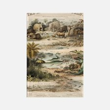 1849 The antidiluvian world by re Rectangle Magnet