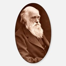 1874 Charles Darwin picture by Leon Decal