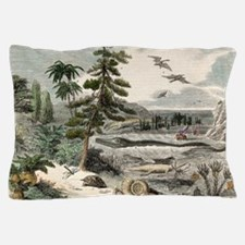 1833 Penny Magazine extinct animals cr Pillow Case